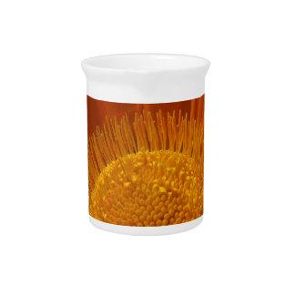 Sunburnt Orange Beverage Pitcher