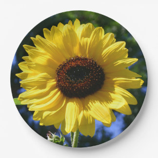 Sunflower 9 Inch Paper Plate