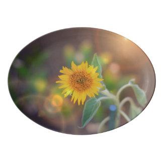 Sunflower bloom serving platter porcelain serving platter