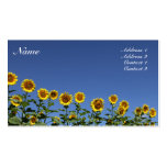 Sunflower Card Pack Of Standard Business Cards