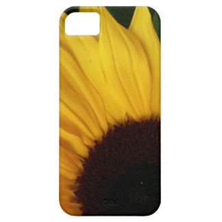 Sunflower closeup barely there iPhone 5 case