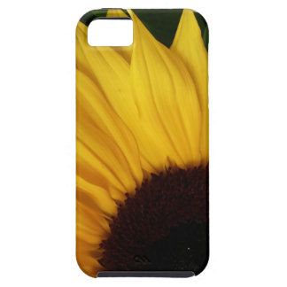 Sunflower closeup iPhone 5 covers