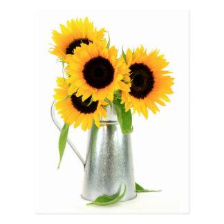 Sunflowers Bouquet Postcard