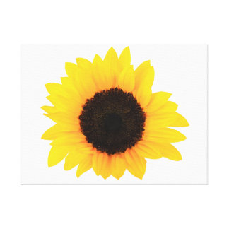 "Sunflowers Single Bloom 24"" x 18"", 1.5"", Canvas"