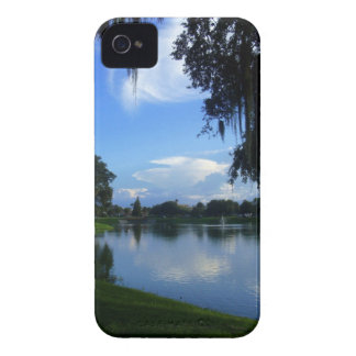 Sunny Day at the Park iPhone 4 Case-Mate Cases