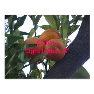 SUNny Light`Bulbs- Postcards¡ :3 Postcard