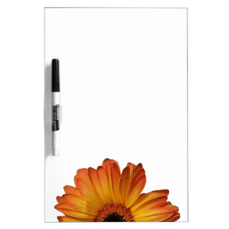 Sunny Orange gerbera flower bloom Dry Erase Board