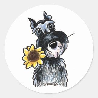 Sunny Schnauzer Classic Round Sticker