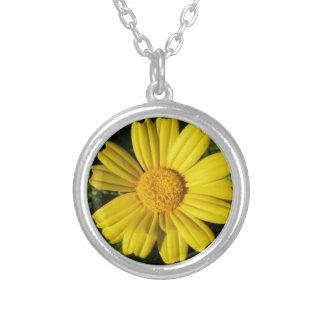 Sunny yellow chamomile round pendant necklace