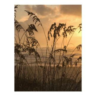 Sunrise 21.5 Cm X 28 Cm Flyer