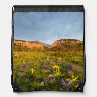 Sunrise Lights Blackleaf Canyon Drawstring Bag