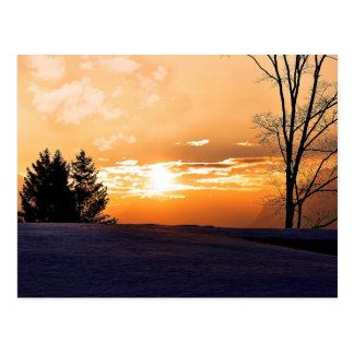 Sunrise trees and gold orange sky postcard