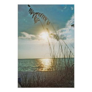 Sunset and sea oats print