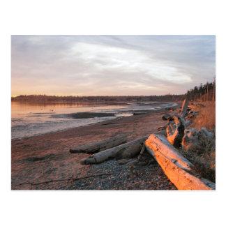 Sunset at Birch Bay Postcard