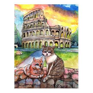 Sunset at Coliseum Postcard