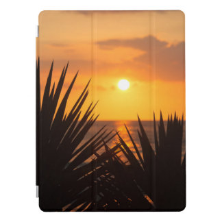 Sunset iPad Pro Cover