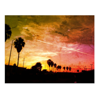 Sunset Palms Los Angeles Postcard
