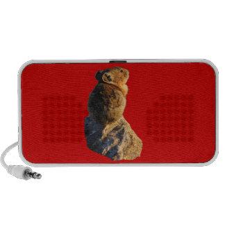 sunset pika mini speakers