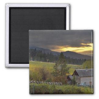 Sunset sky over vineyards and historic log cabin magnet