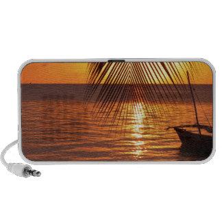 Sunset iPhone Speakers