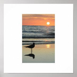 Sunset @ The Treasure Island Poster