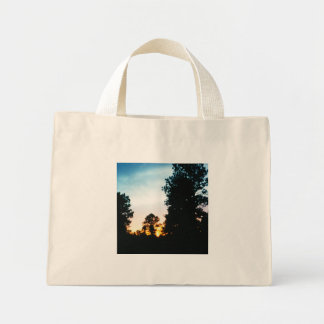 Sunset tote mini tote bag