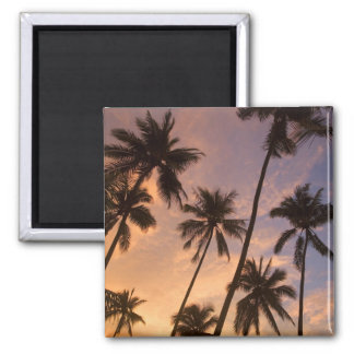 Sunset with Palm Trees, Moorea, French Polynesia 2 Magnet