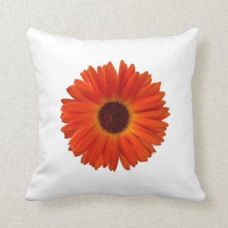 Super Bright Orange Gerbera Daisy on White Pillow