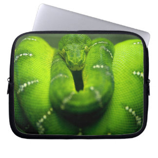 Super Natural Wild, Green tree snake HD Laptop Sleeve