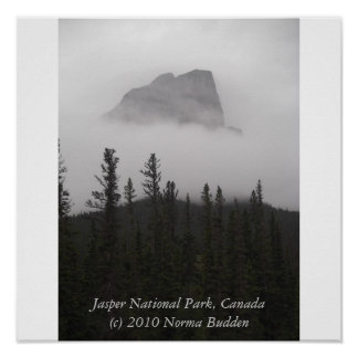 Surrounded by Fog Poster by Norma Budden