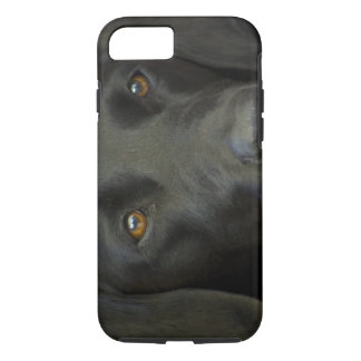 Svart Labrador hund iPhone 8/7 Case