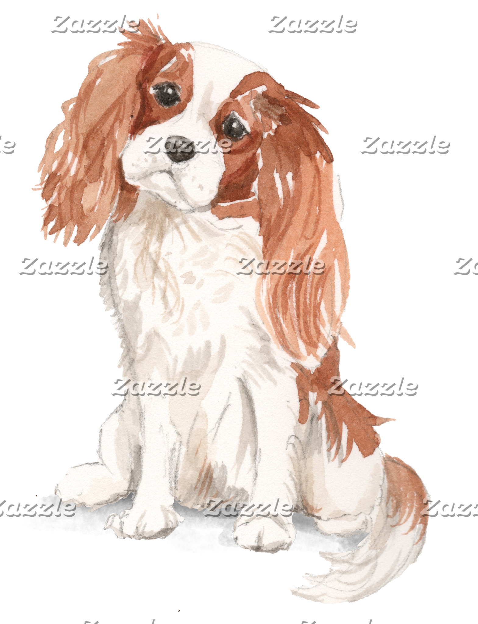 Cavalier King Charles Watercolor Illustration