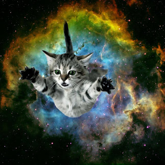 Galaxy Cat Universe Kitten Launch