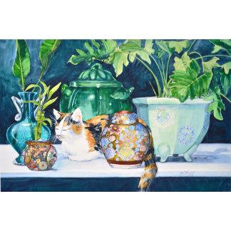 Cat Portrait Collection