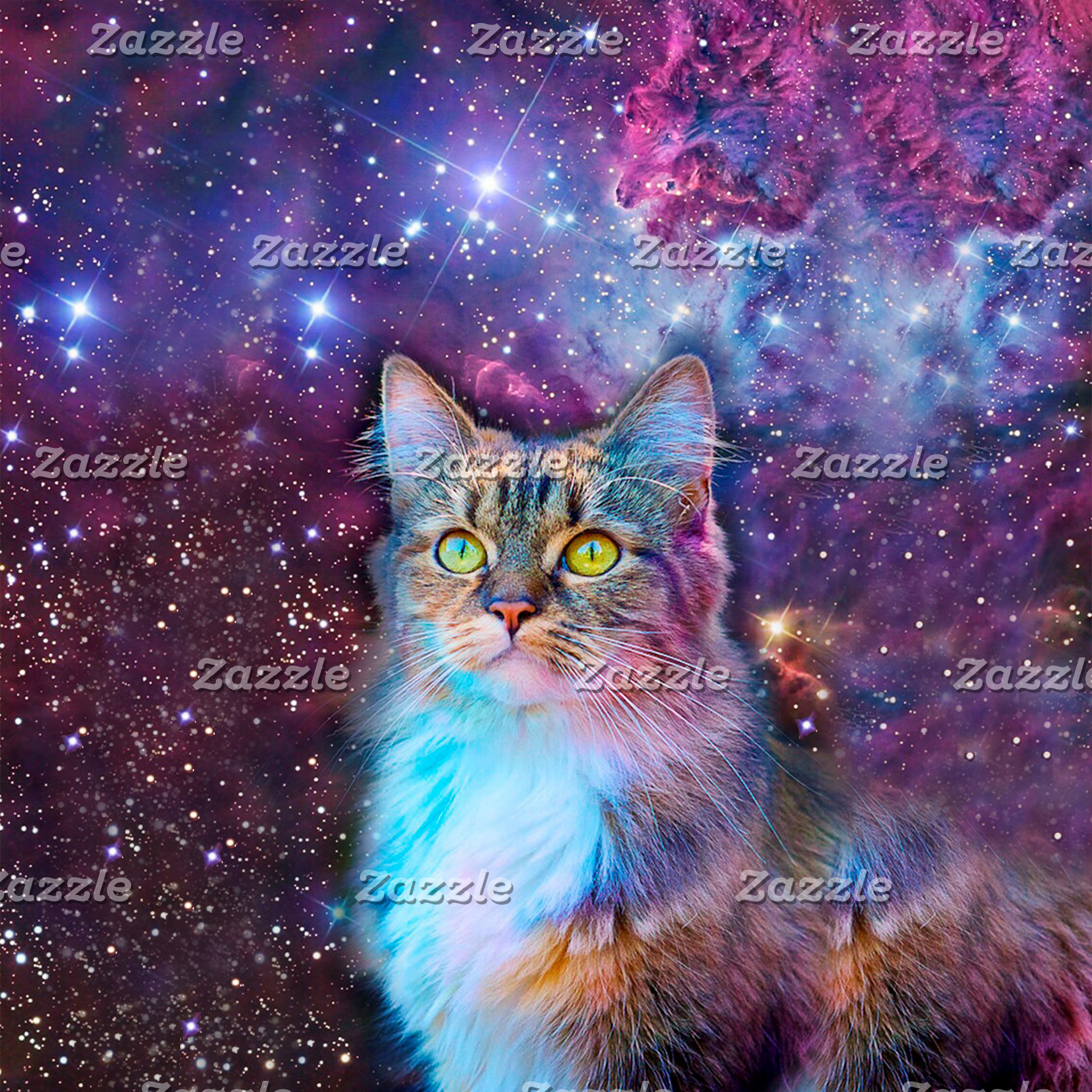 Proud Cat With Space Background