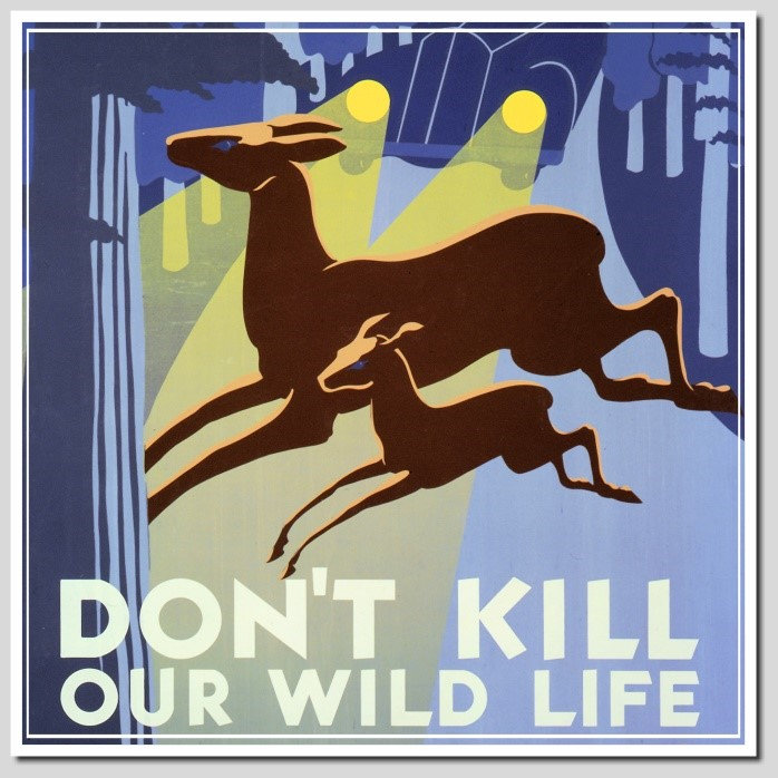 WPA AND GOVERNMENT POSTERS