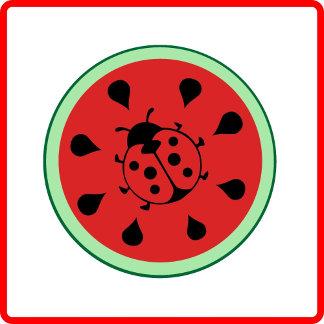 Watermelon and ladybug