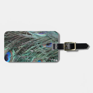 Swagger Peafowl Feathers Luggage Tag