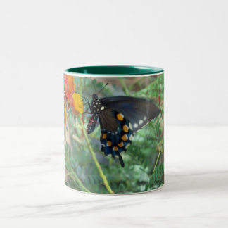 Swallowtail Butterfly Two-Tone Coffee Mug