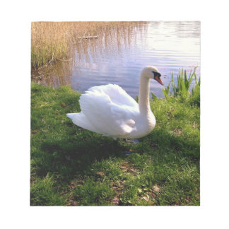 Swan on the Lake Nature Landscape Notepad