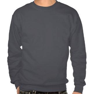 Sweatshirt with cartoon dragon pull over sweatshirt