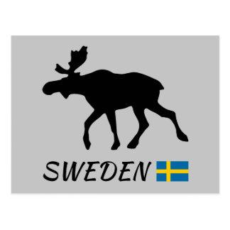 Sweden Elk and flag Postcard