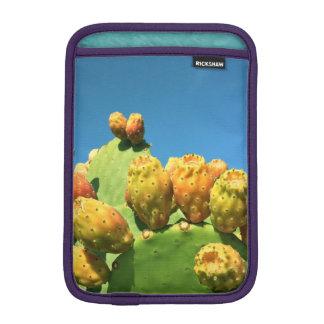 Sweet Blue Skies iPad Mini Sleeves