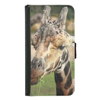 sweet giraffe