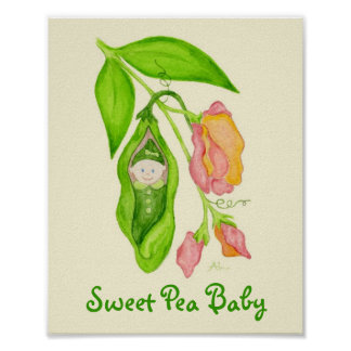 Sweet Pea Baby Girl art print poster