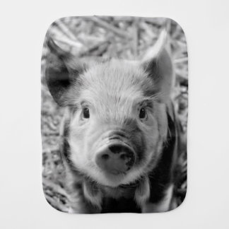 sweet piglet, black white burp cloths
