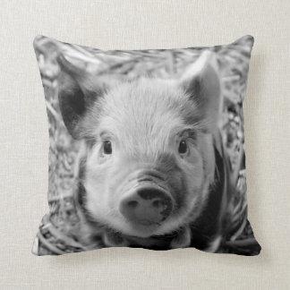 sweet piglet, black white cushion