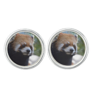 Sweet Red Panda Bear Cufflinks