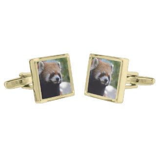 Sweet Red Panda Bear Gold Finish Cuff Links