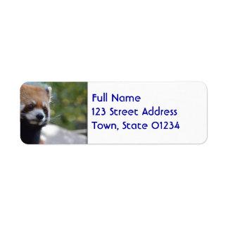 Sweet Red Panda Bear Return Address Label